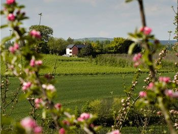 4 star self catering Herefordshire
